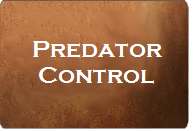 Button linking to Predator Control page